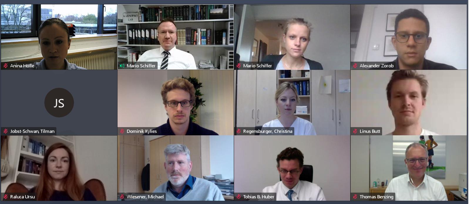Auf dem Bild sind alle Beteiligten des 1. RECORD-Meetings im Videomeeting zu sehen